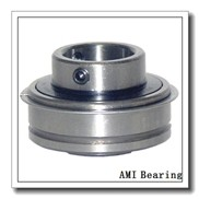 AMI UETPL207-20MZ20RFW  Mounted Units & Inserts