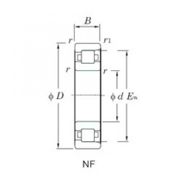KOYO NF213 cylindrical roller bearings