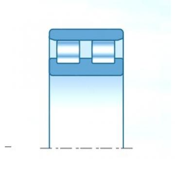 NTN NN3008C1NAP4 cylindrical roller bearings