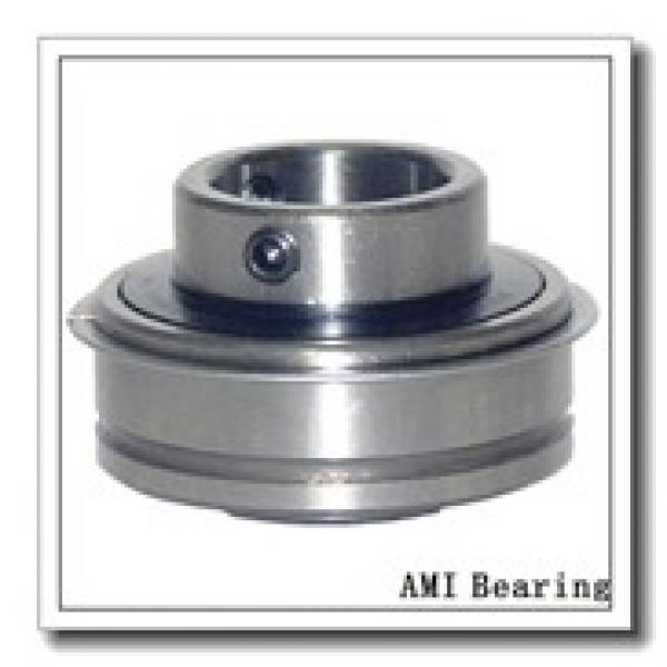 AMI UCF201C4HR23  Flange Block Bearings #1 image
