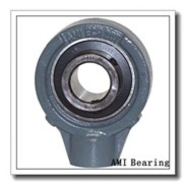 AMI UCPPL209-28MZ2B  Pillow Block Bearings #1 image