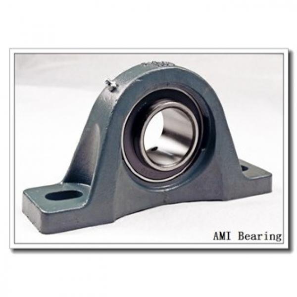 AMI UCF201C4HR23  Flange Block Bearings #2 image