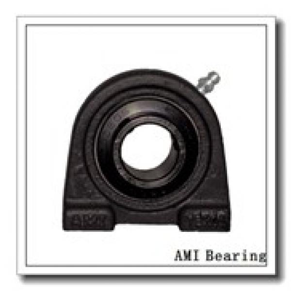 AMI UCEP210-31C4HR5  Pillow Block Bearings #1 image