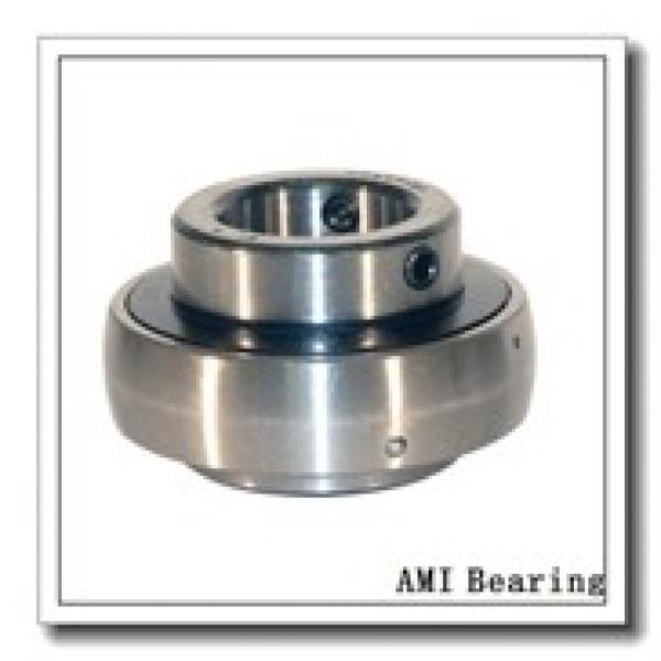 AMI UEHPL206-19CEW  Hanger Unit Bearings #1 image