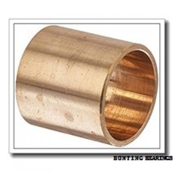 BUNTING BEARINGS BSF161810  Plain Bearings #1 image